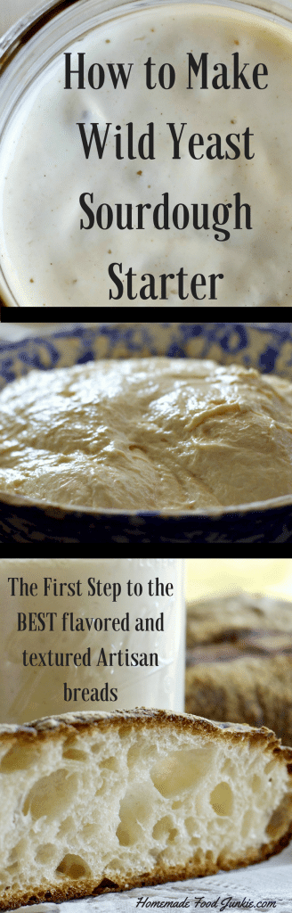 How to Make Wild Sourdough Starter and why you should. Basic wild yeast starter Recipe included.
