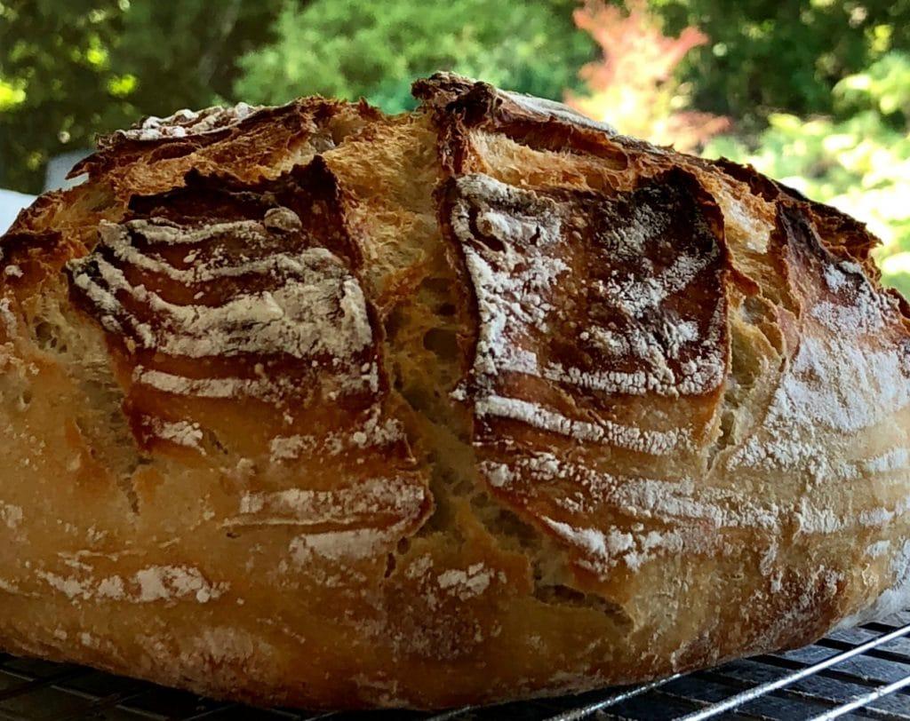 Beginners Artisan Sourdough Bread formed in a ridged banneton basket.