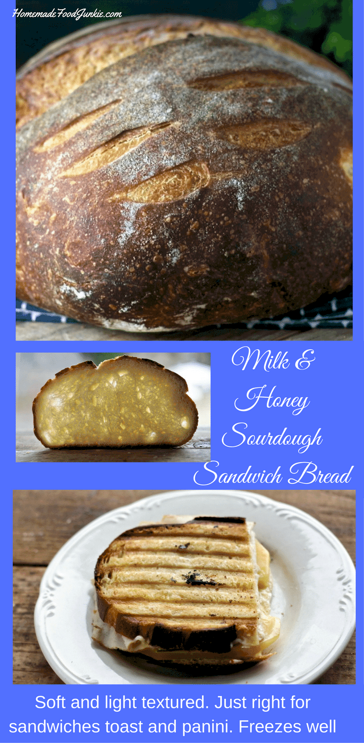 Milk And Honey Sourdough Sandwich Bread