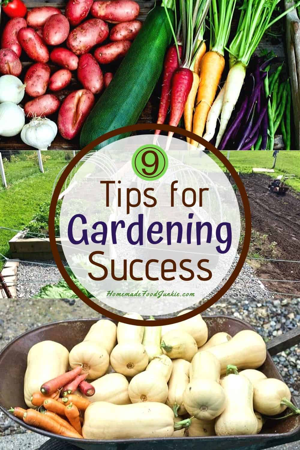 9 tips for gardening success-pin image