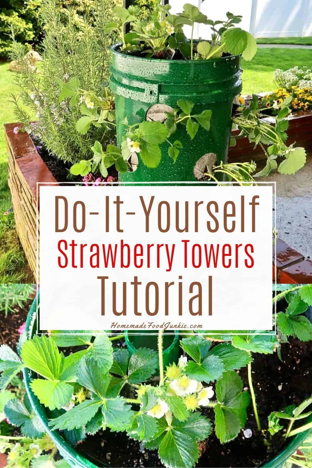 Do it yourself strawberry towers tutorial-pin image