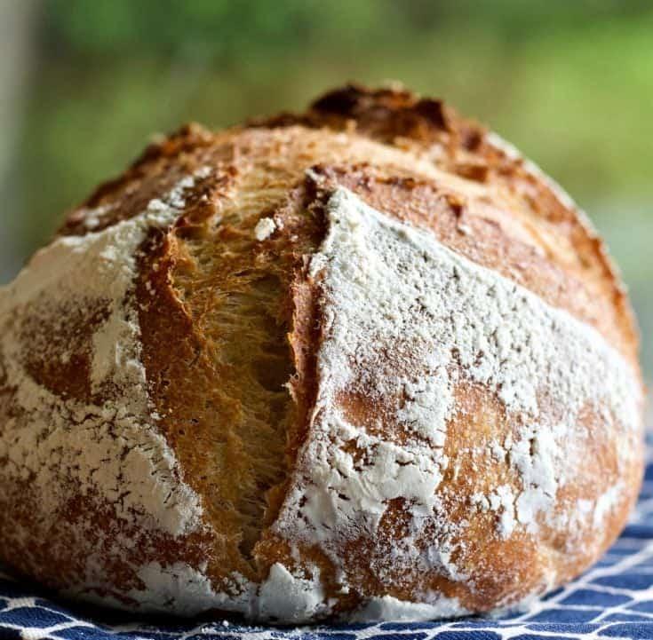 Sourdough Whole Wheat Artisan Bread