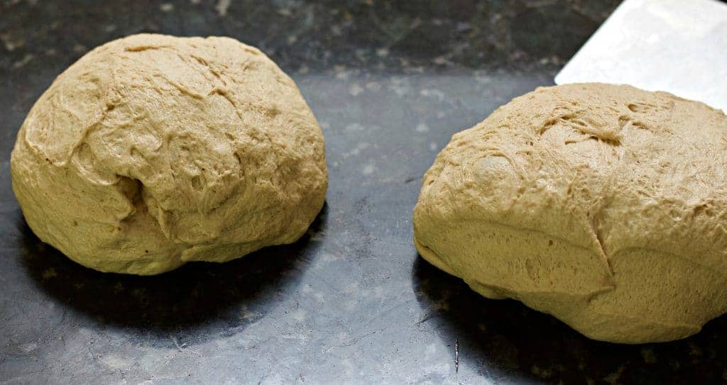 Sourdough Whole Wheat Dough