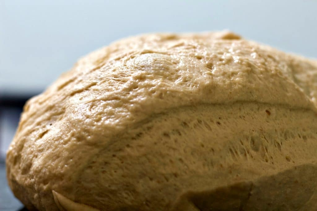 Beginner Whole Wheat Artisan Sourdough Bread dough