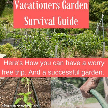 Vacationers Garden Survival Guide