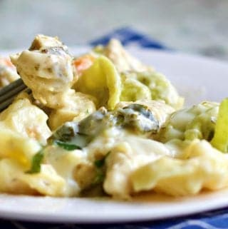 Chicken tortellini Alfredo on a fork