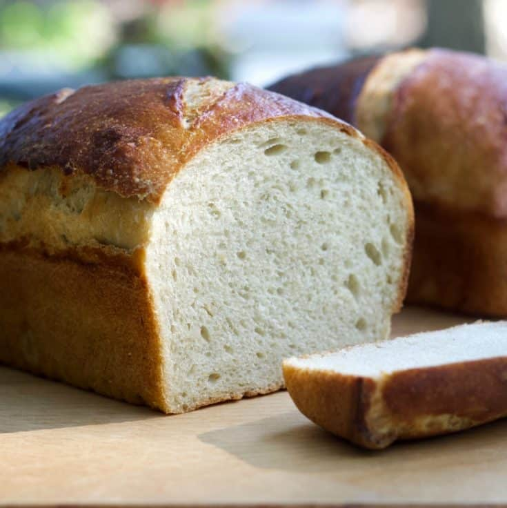 Sashas Soft Loaf Featured