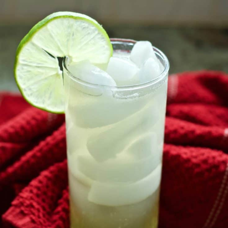 Mexican Mule 1