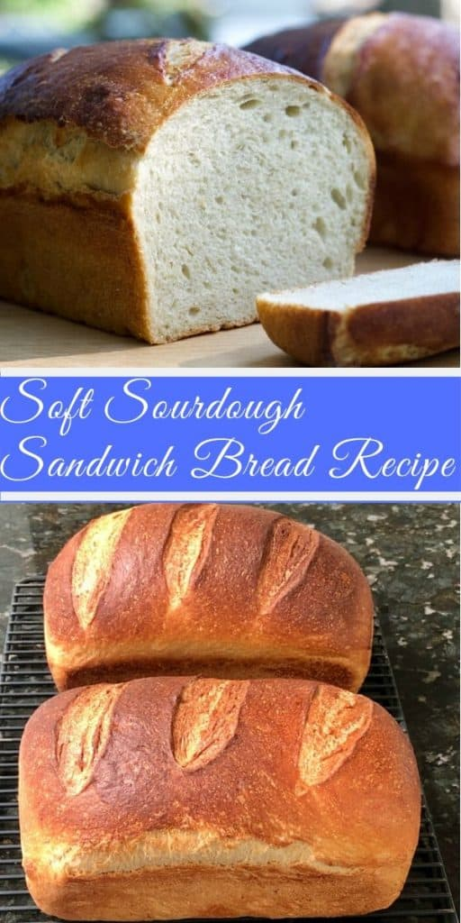 Soft Sourdough Sandwich Bread Recipe-Pin Image: