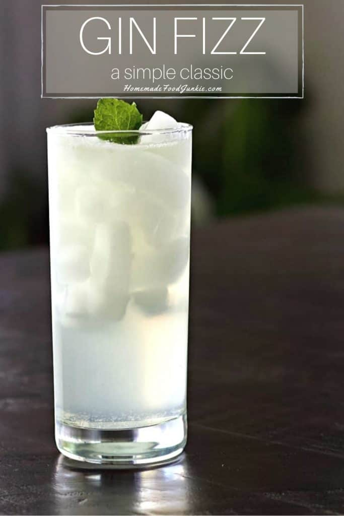 Gin Fizz Cocktail-pin image