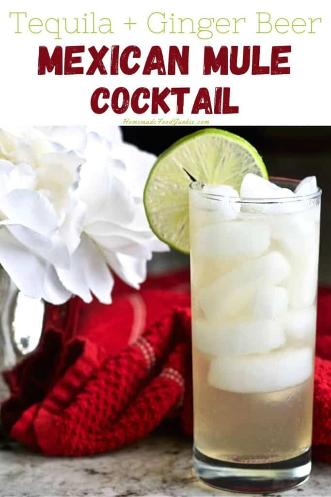 Mexican Mule Cocktail-pin image