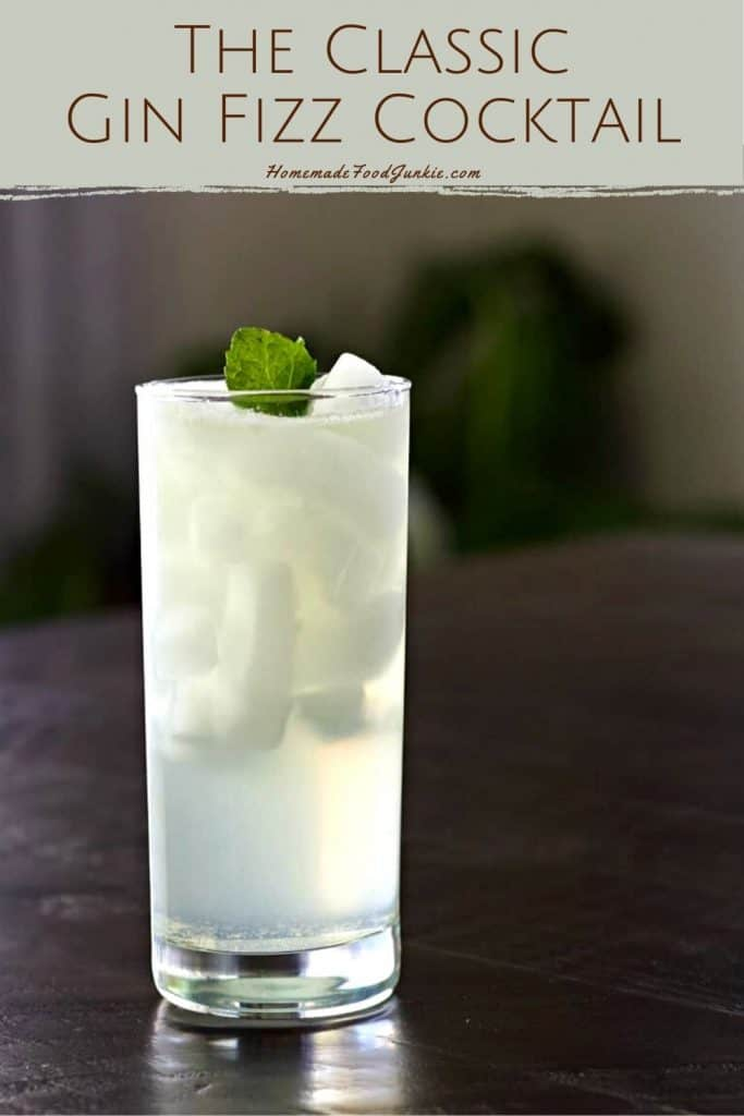 The classic gin fizz cocktail-pin image