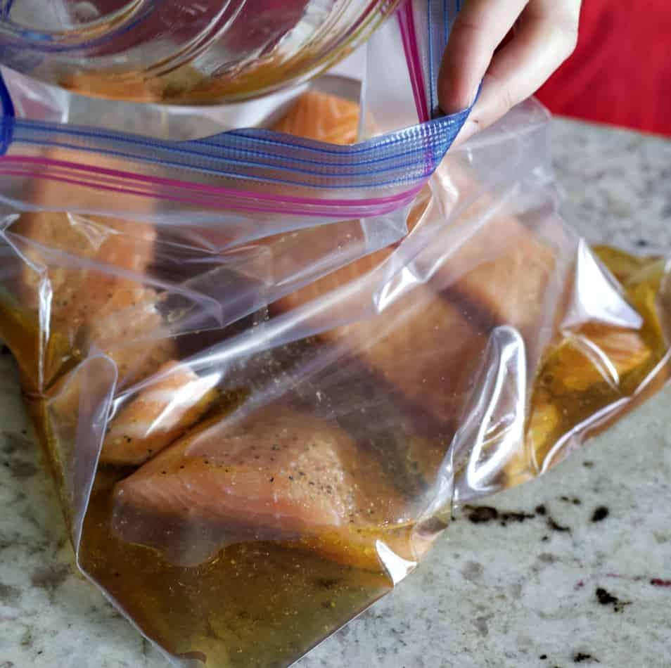 salmon in marinade bag