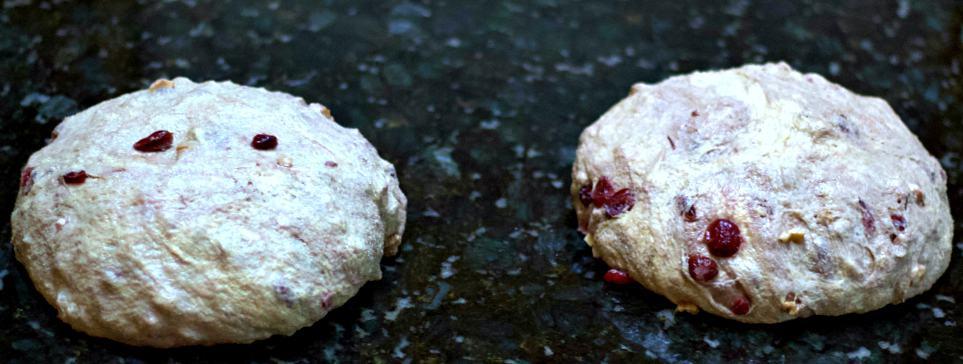 bench rest-cranberry walnut bread