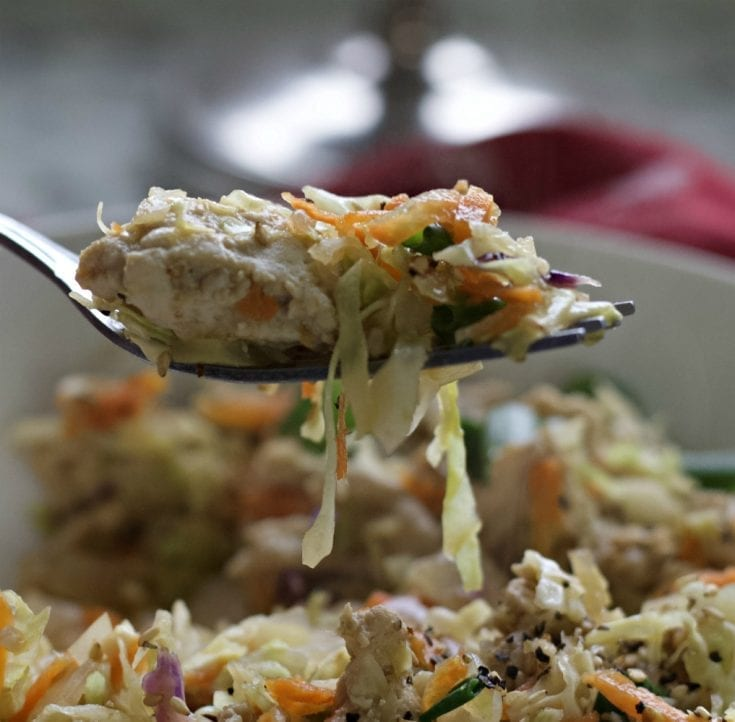 egg roll in a bowl spoon shot