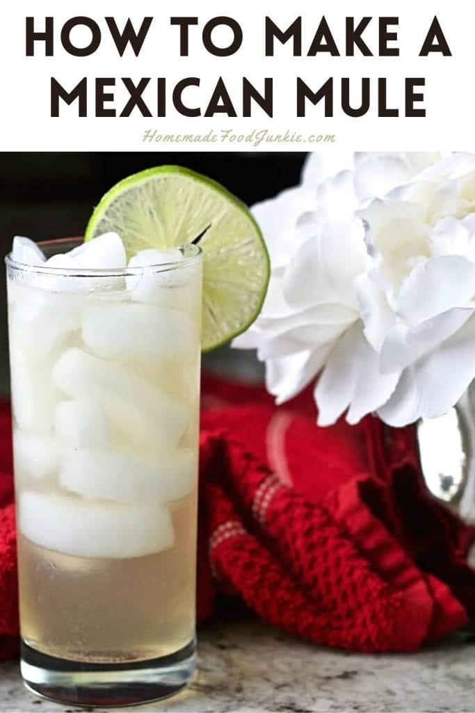 How to make a mexican mule-pin image