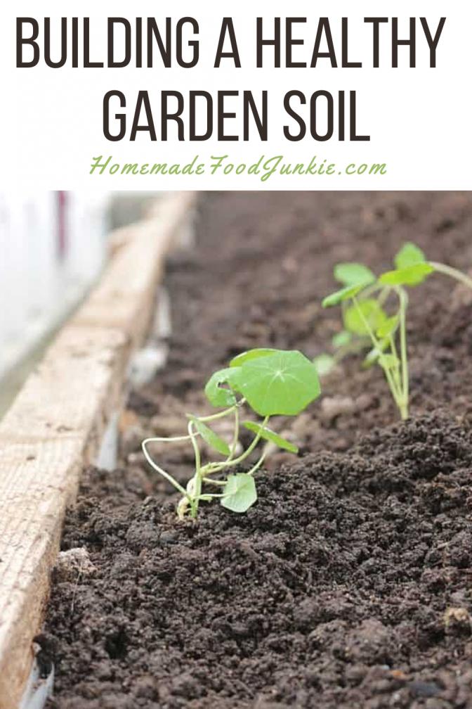 Building A Healthy Garden Soil-Pin Image