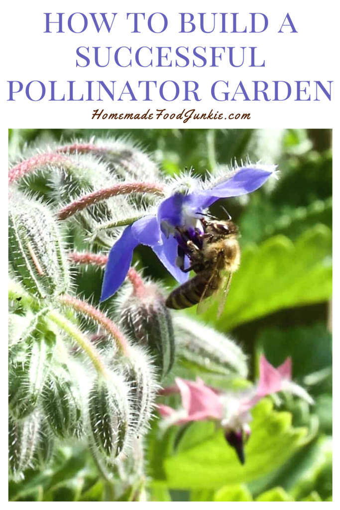 How to build a successful pollinator garden-pin image