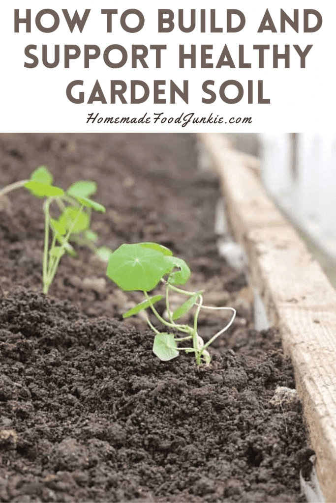 How To Build And Support Healthy Garden Soil-Pin Image