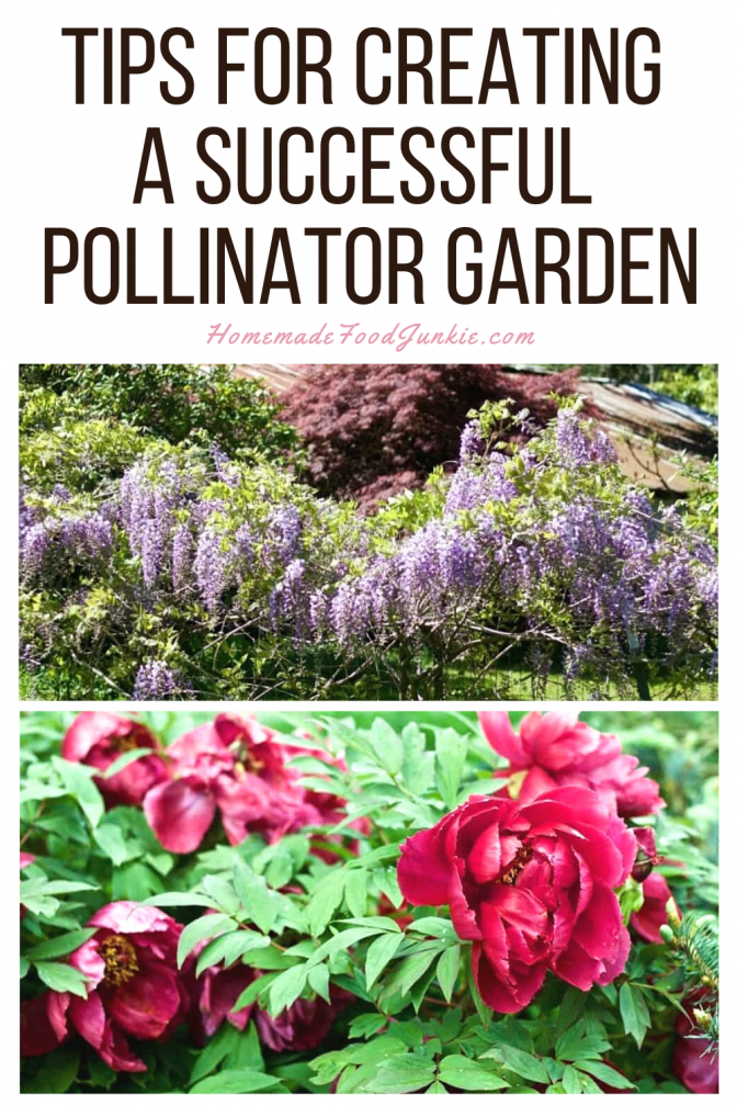 Tips for creating a successful pollinator garden-pin image