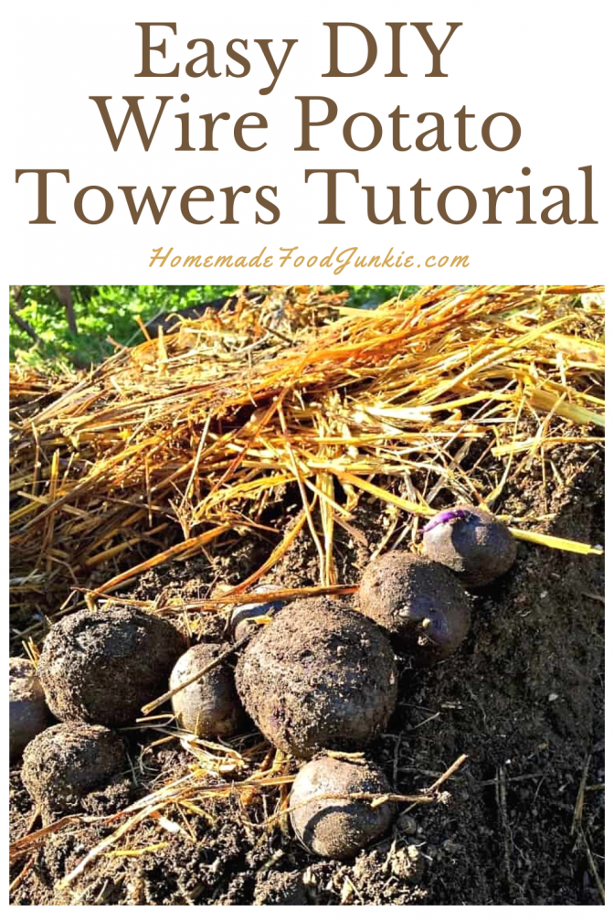 Easy Diy Wire Potato Towers Tutorial-Pin Image