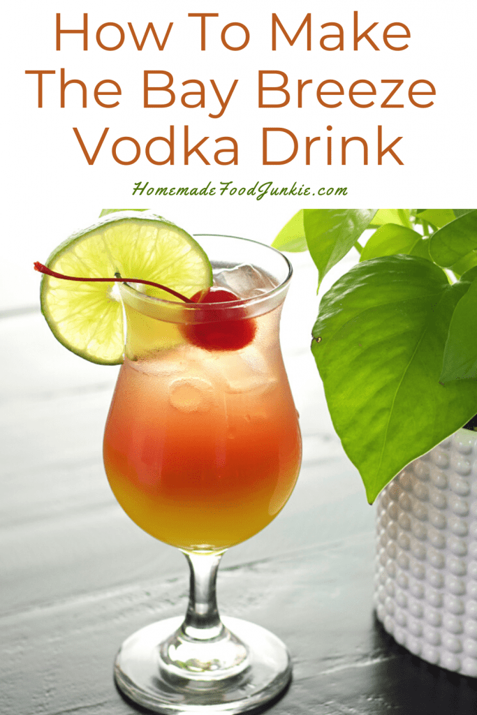 How to make the bay breeze vodka drink-pin image