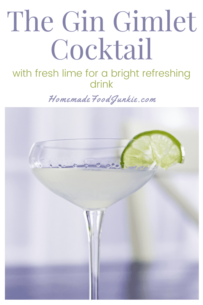 The gin gimlet cocktail-pin image