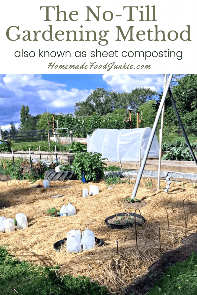 The no-till gardening method-pin image