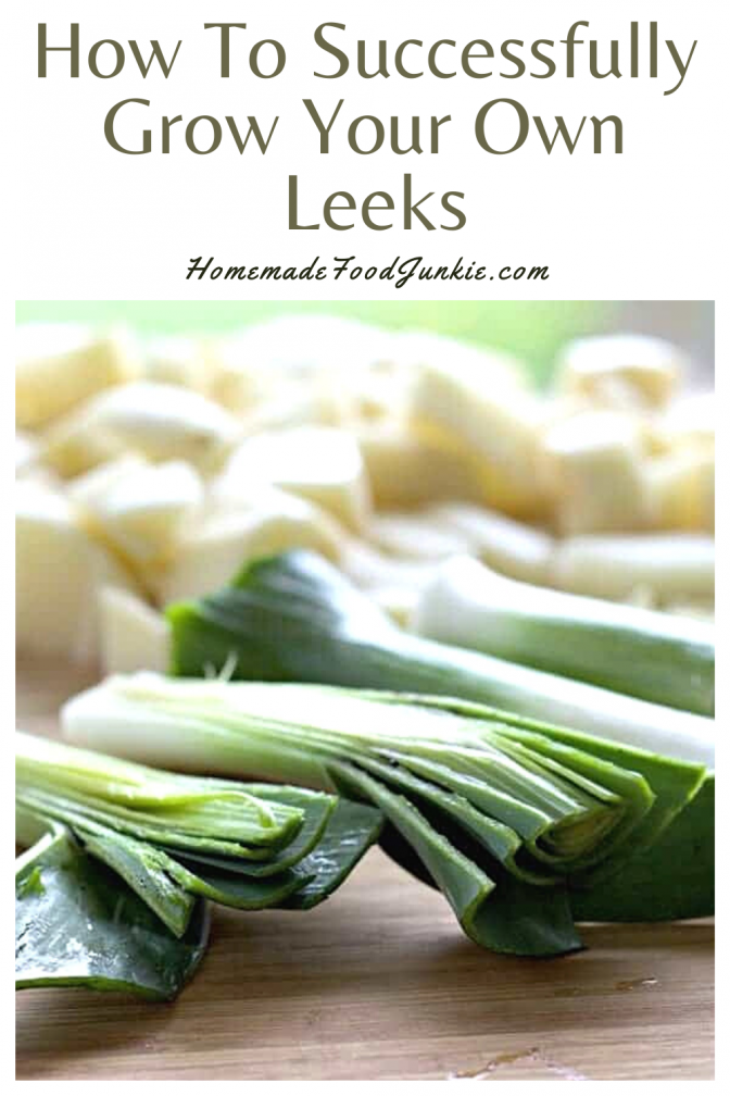 How to successfully grow your own leeks-pin image