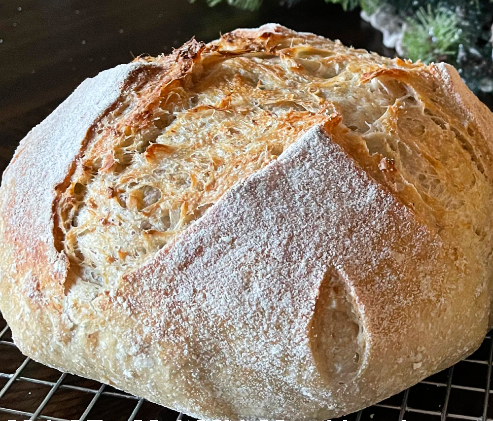 sourdough bread with rolled oats. Close up of rice flour on crust and caramelized crust-boule