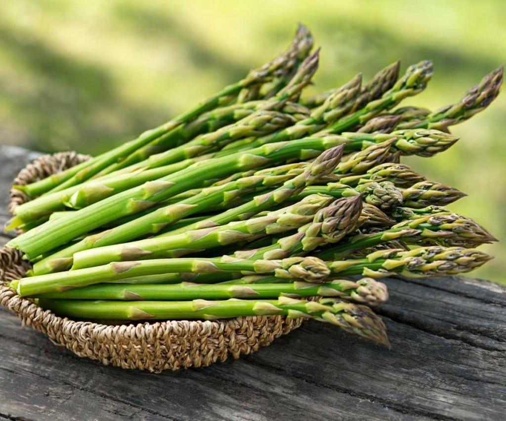 Garden Fresh Asparagus