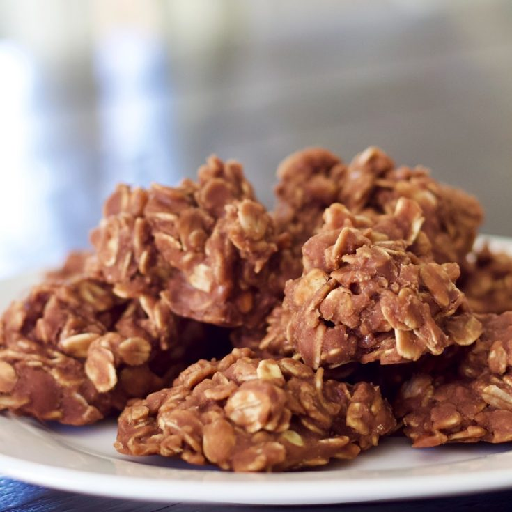 No Bake Cookies Plated 2