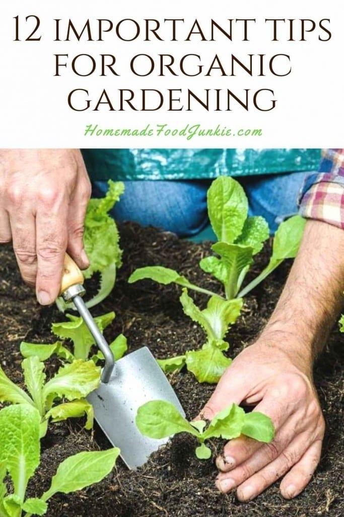 12 important tips for organic gardening-pin image