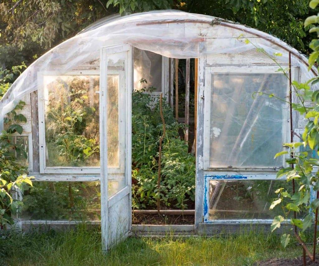 Greenhouse Plastic