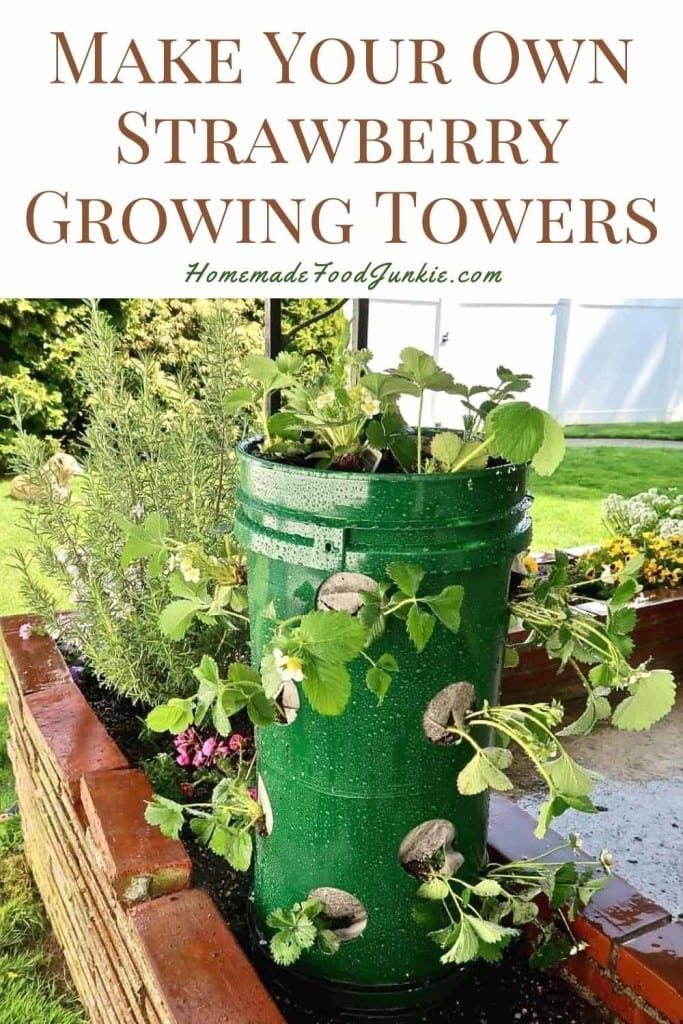 Make Your Own Strawberry Growing Towers-Pin Image