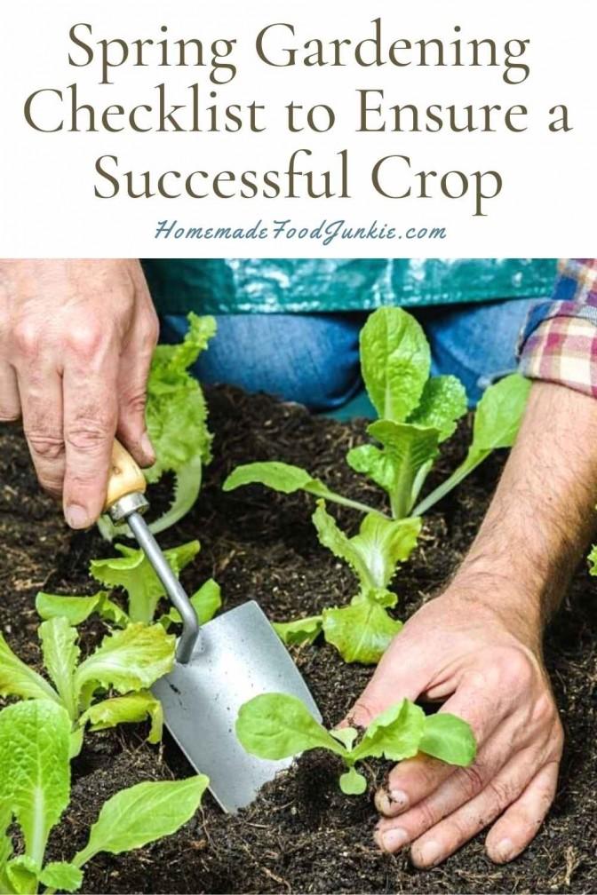 Spring Gardening Checklist To Ensure A Successful Crop-Pin Image