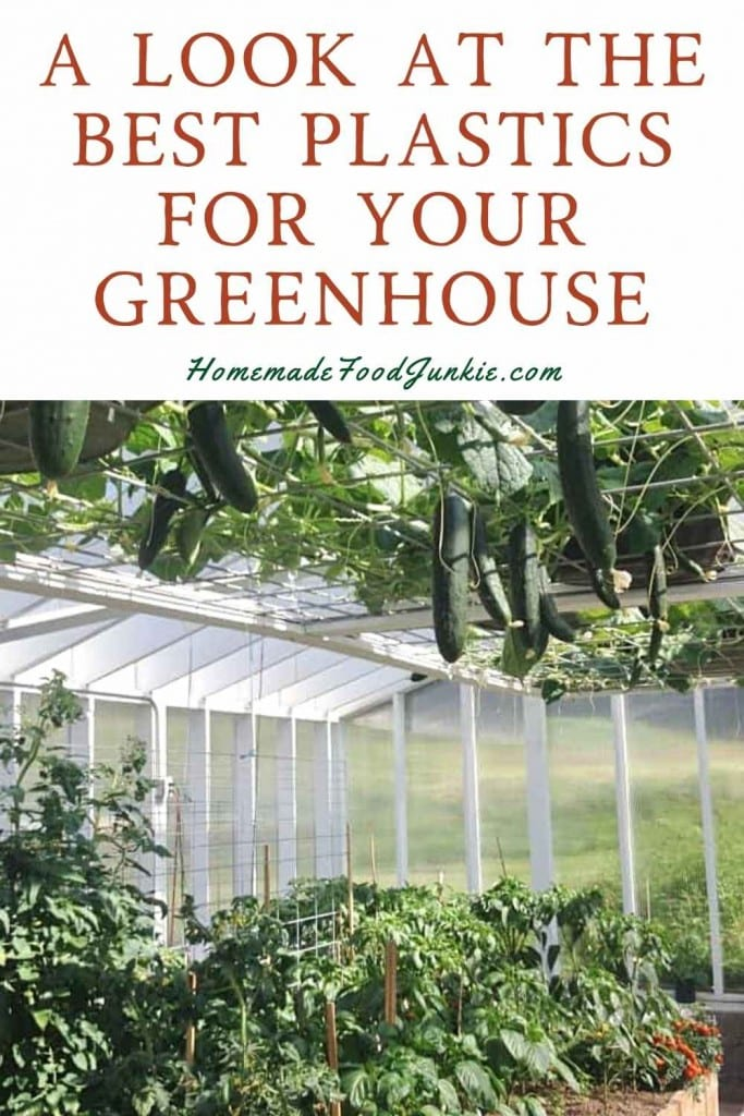A Look At The Best Plastics For Your Greenhouse-Pin Image