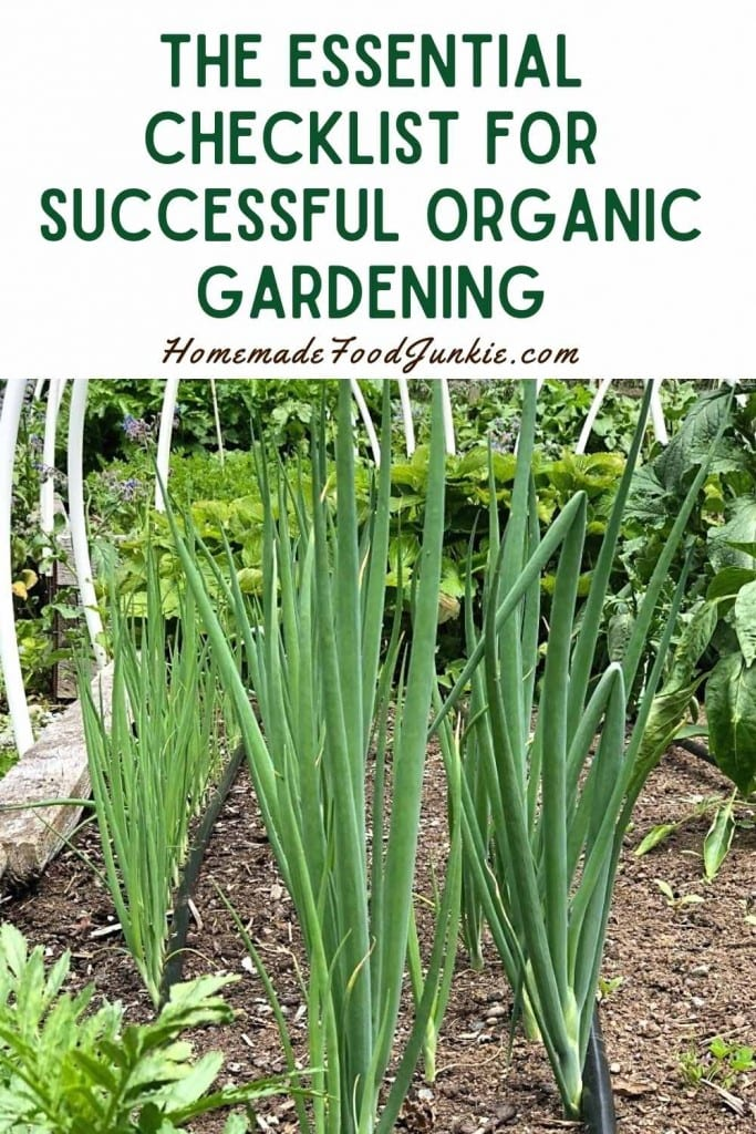The essential checklist for successful organic gardening-pin image