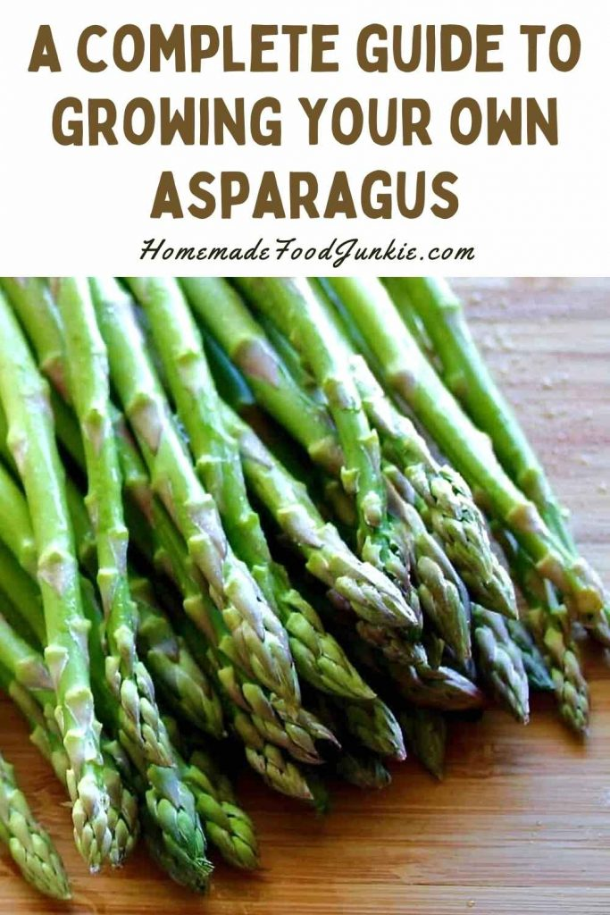 A Complete Guide To Growing Your Own Asparagus-Pin Image