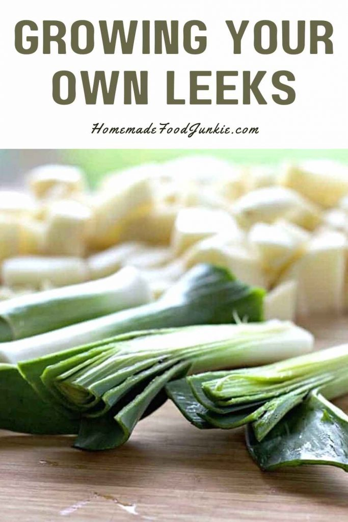Growing Your Own Leeks-Pin Image