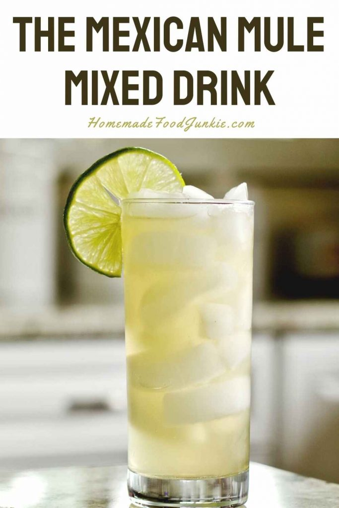 The Mexican Mule Mixed Drink-Pin Image