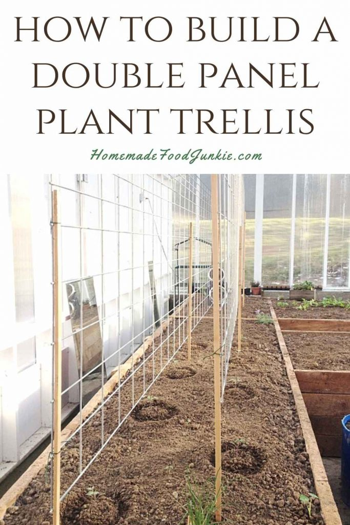 How To Build A Double Panel Plant Trellis-Pin Image