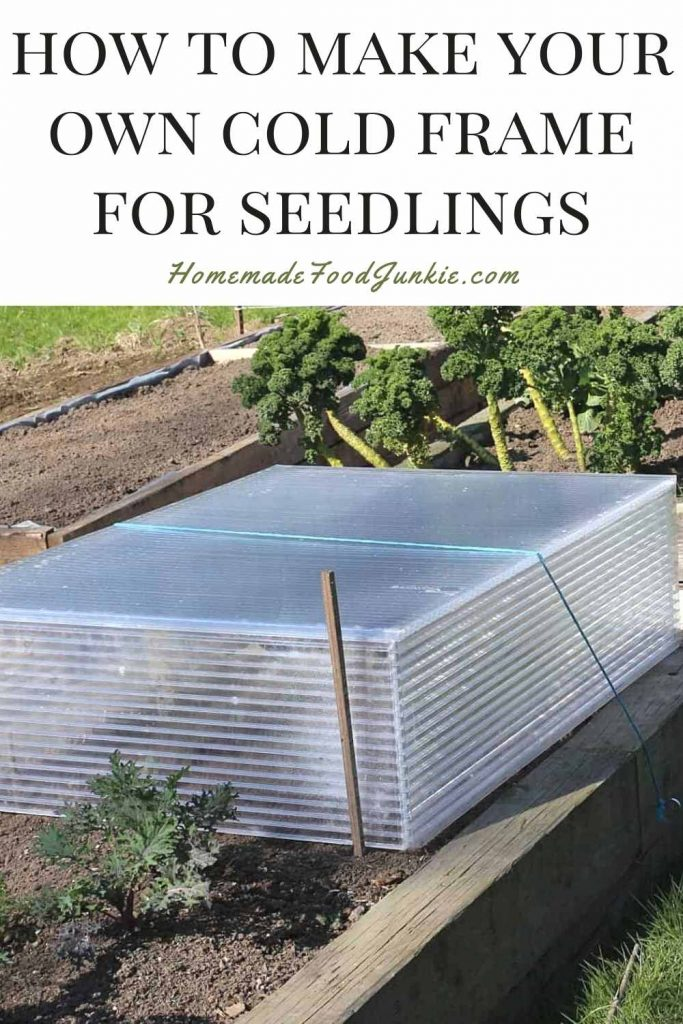 How To Make Your Own Cold Frame For Seedlings-Pin Image
